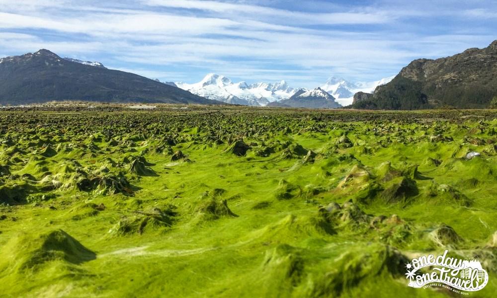 Australis croisière Patagonie Terre de feu