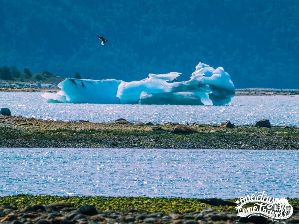 Australis croisière Patagonie 33