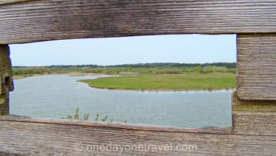 Photo of Escapade nature en Baie de Somme