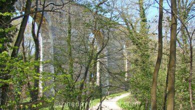 Photo of Le Sentier de la Bièvre dans les Yvelines : idée balade près de Paris