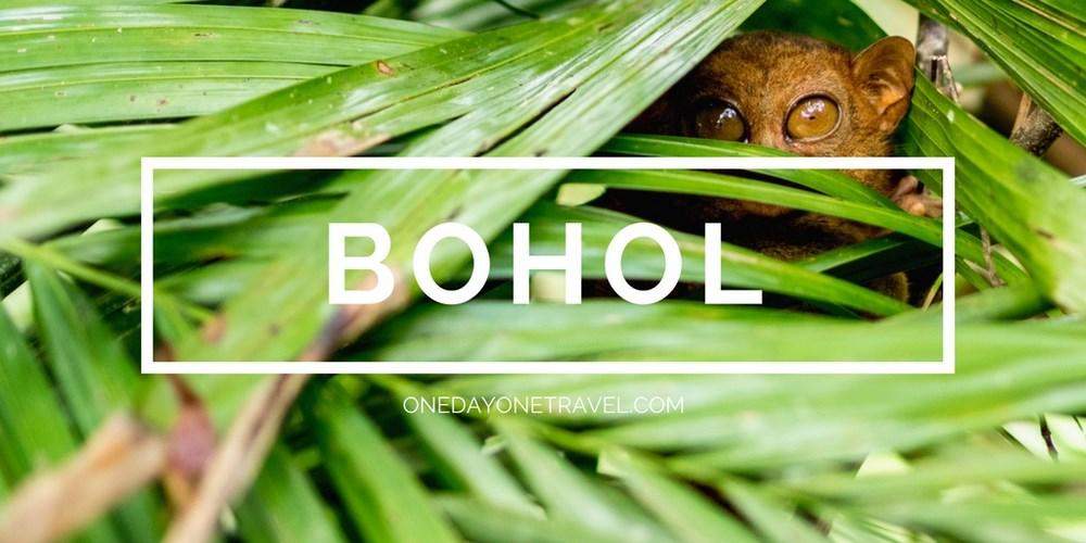 Bohol blog voyage Philippines tarsier