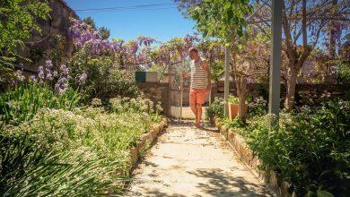 Camargue jardin échange de maison Richard