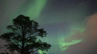 Photo of Observer les aurores boréales à Abisko en Laponie suédoise