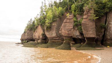 Photo of Visiter la baie de Fundy au Nouveau-Brunswick : Guide voyage et conseils