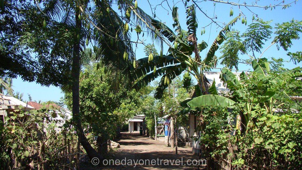 Gili Blog Voyage Bali Gili Trawangan