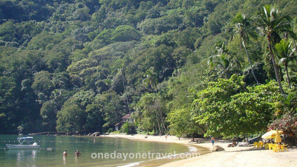 Ilha Grande plage palmier