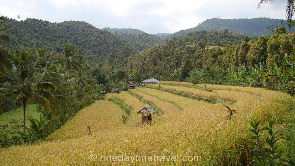 Itinéraire à Bali Lombok Munduk