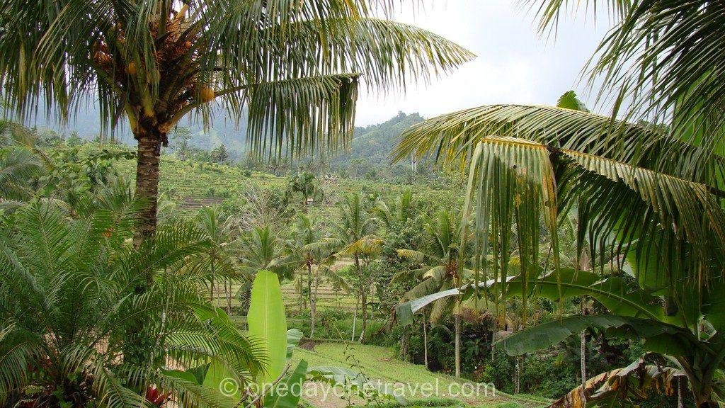 Itinéraire à Bali Lombok Sidemen