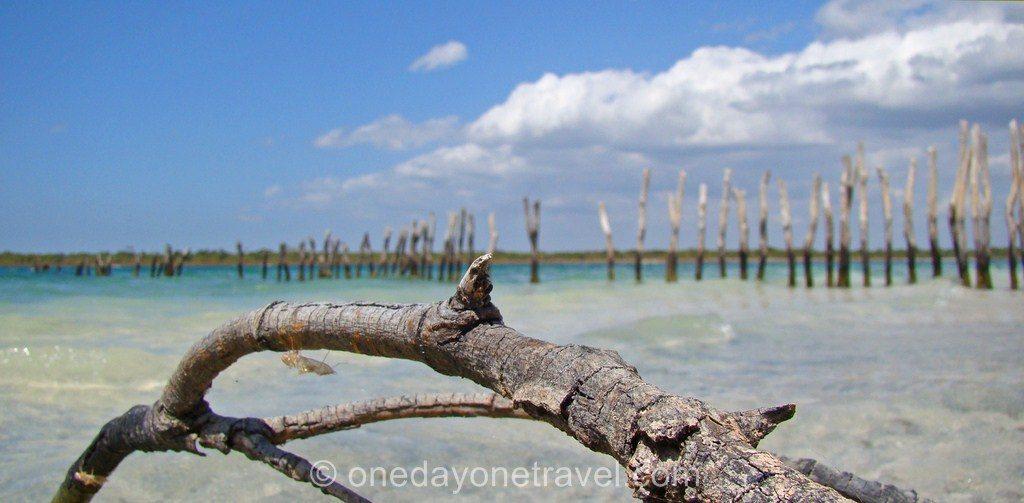 Itinéraire Brésil Jericoacoara plage blog voyage OneDayOneTravel
