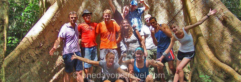 Itinéraire Brésil forêt Amazonie blog voyage OneDayOneTravel