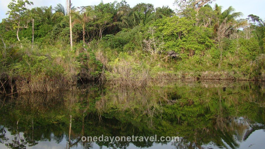 Jamaraqua Tapajos Amazone canot
