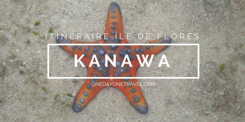 Kanawa itinéraire ile de flores blog voyage indonesie