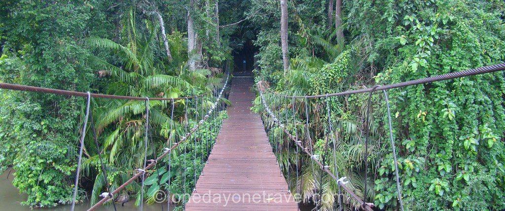 Khao Yai Parc Thaïlande pont