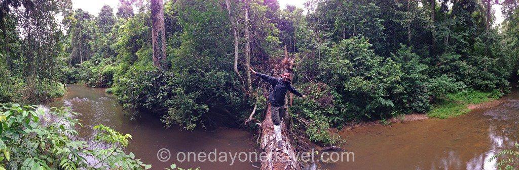 Khao Yai trek rivière