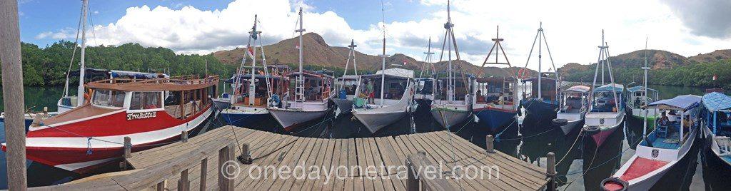 Komodo island Flores Indonésie port