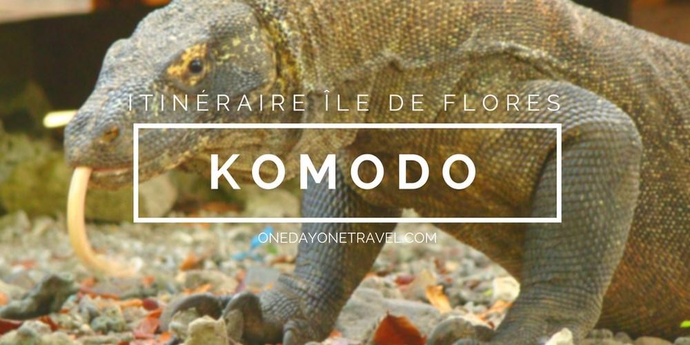 Komodo itinéraire ile de flores blog voyage indonesie