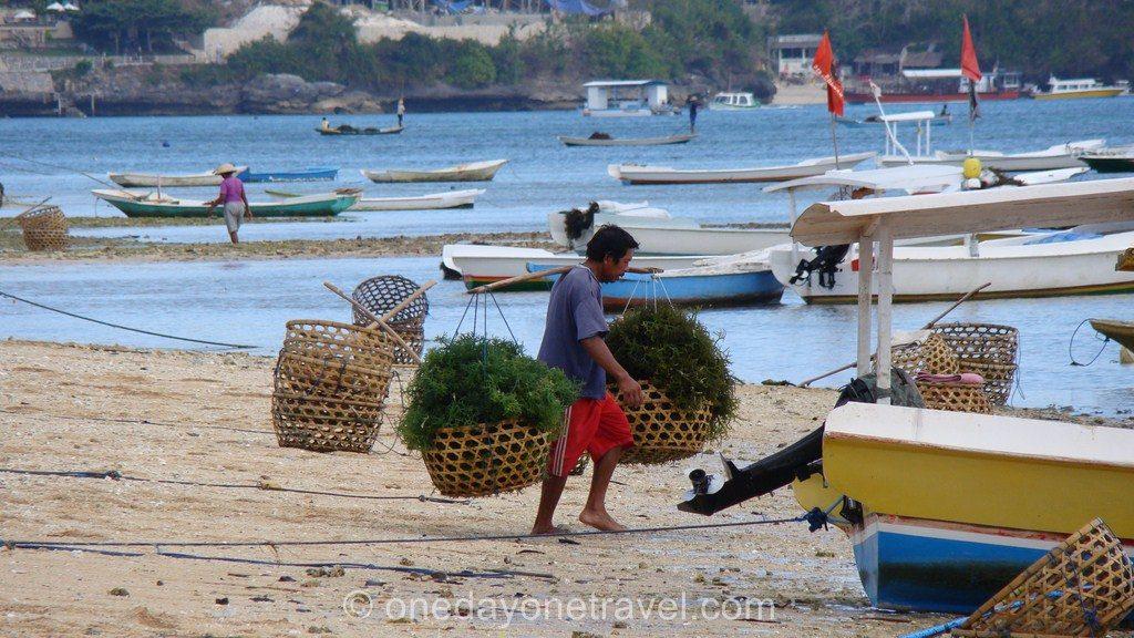 Lembongan Bali Blog Voyage