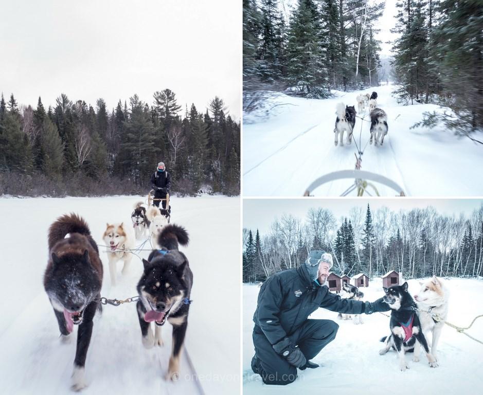 Les laurentides en hiver meekos traineau chiens blog voyage quebec