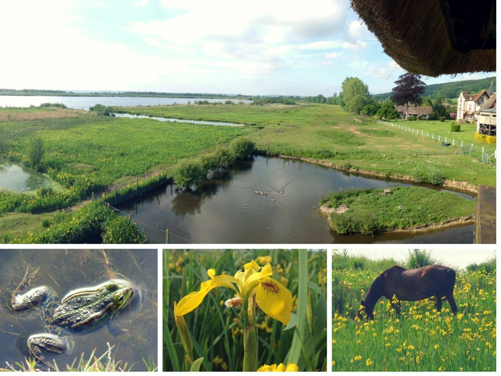 Marais Vernier Nature week-end a vert