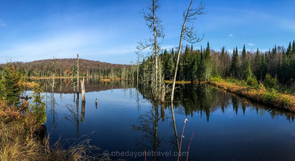 Mauricie lac nature blog voyage OneDayOneTravel