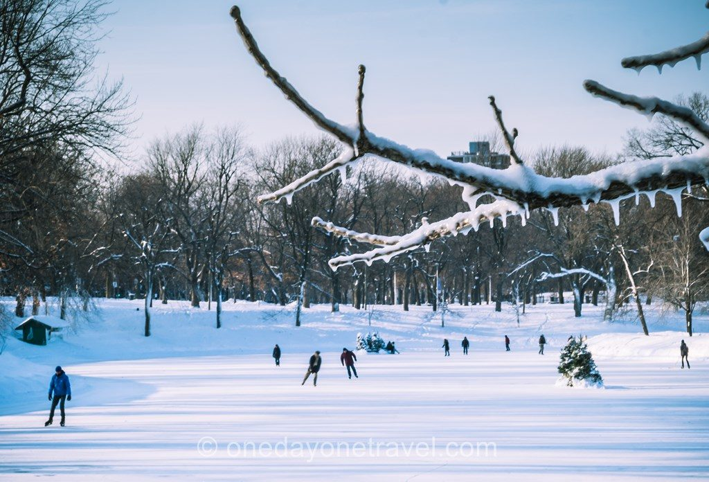 Parc Lafontaine patinoire hiver Montréal