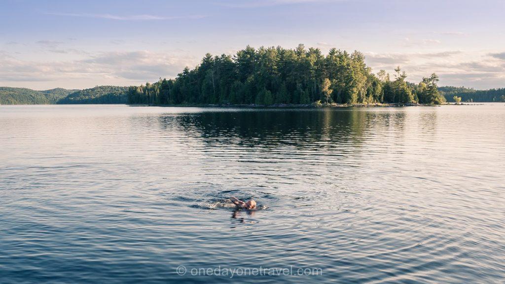 lav Poisson Blanc Laurentides nage