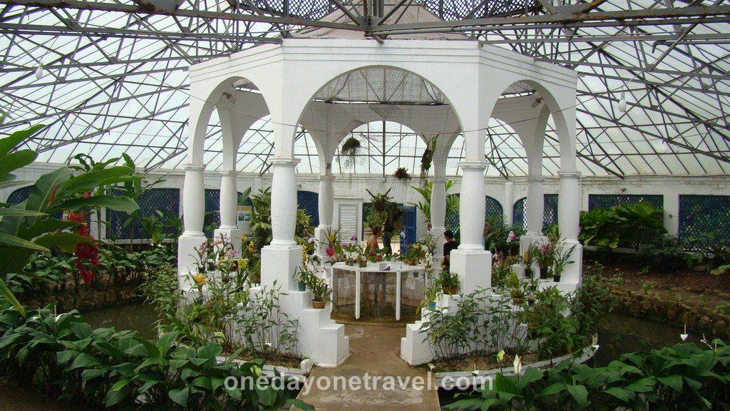 Rio de Janeiro Jardin Botanique serre