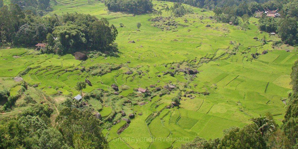Rizieres Rantepao Pays Toraja