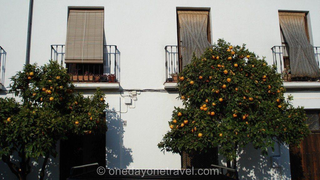 Ronda Andalousie façades Blog Voyage OneDayOneTravel