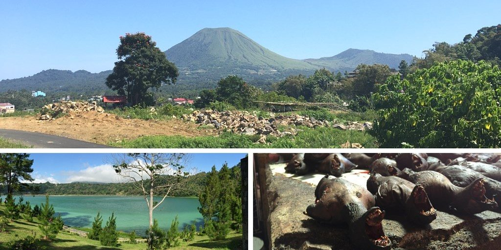 Sulawesi Célèbes voyage Tomohon