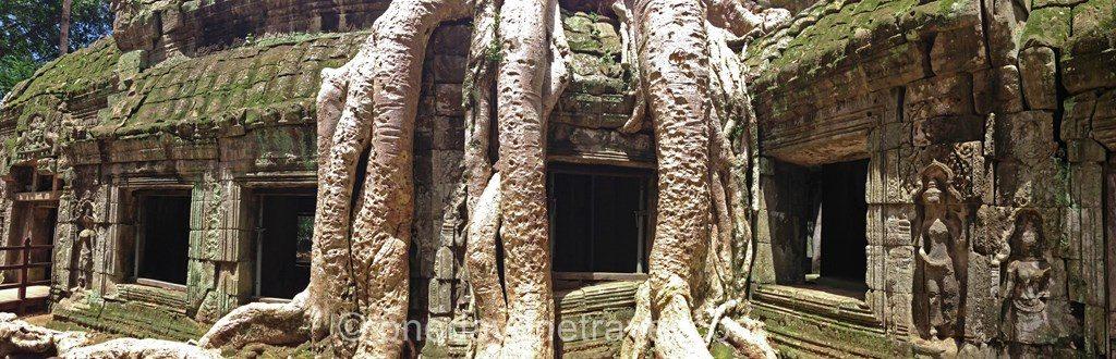 Ta prohm Angkor temple blog voyage OneDayOneTravel