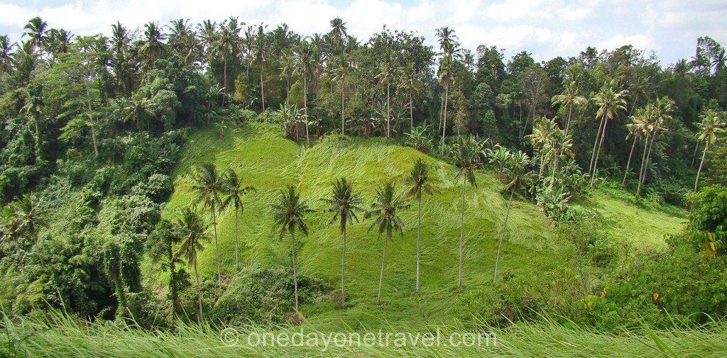Ubud Bali Campuan Randonnée