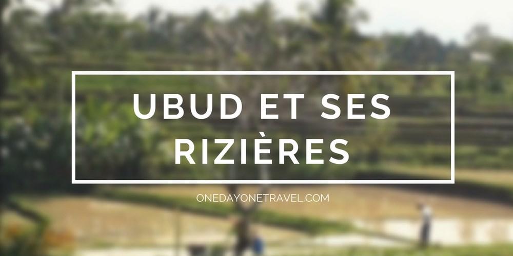 Ubud et ses rizières Bali Indonésie - Vignette blog voyage OneDayOneTravel