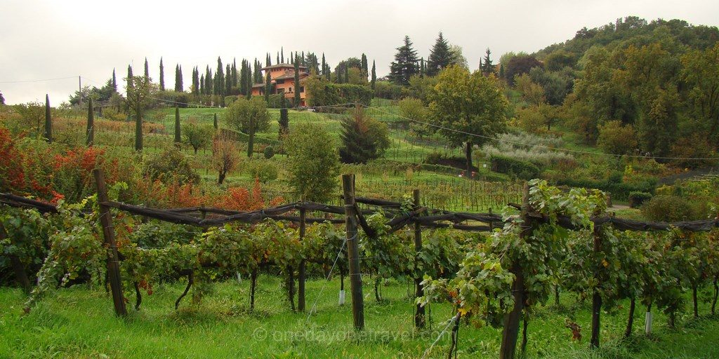 Vignobles Bergame Lombardie
