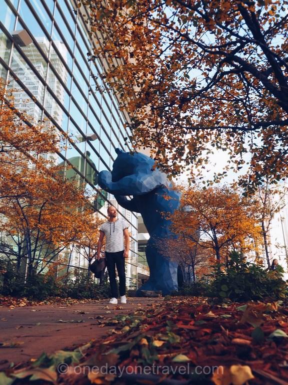 Visiter Denver ours bleu