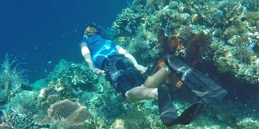 bunaken snorkeling Sulawesi Célèbes