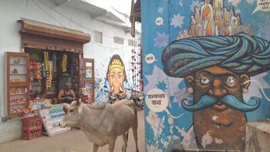 Photo of Carnet de voyage et conseils pour visiter Pushkar en Inde