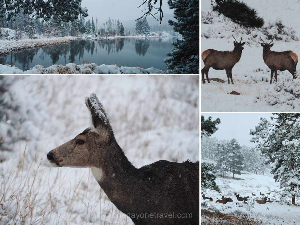 road-trip-estes-park-hiver-rocky-mountain