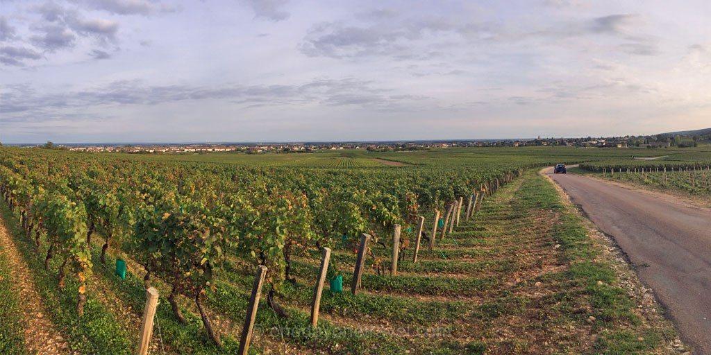 route grand cru dijon beaune Bourgogne