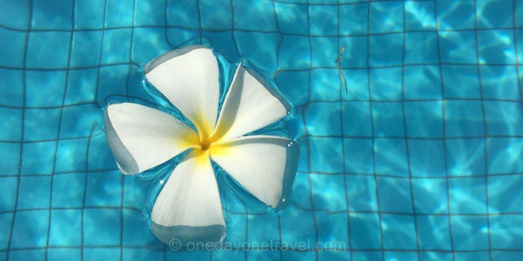 villa bali frangipanier piscine seminyak