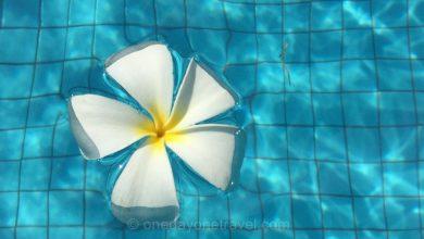 Photo of Bali Chic ou 5 expériences de rêve à vivre à Bali