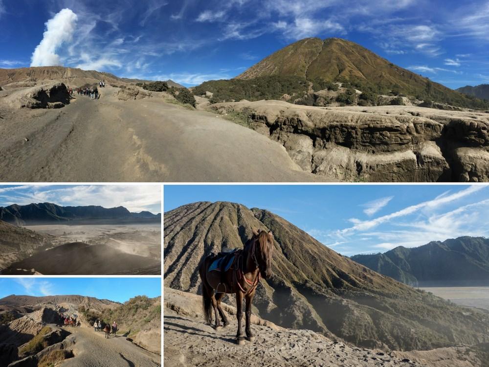 volcans de java bromo cheval de mongolie