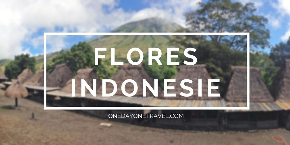 voyager ile flores indonesie blog voyage
