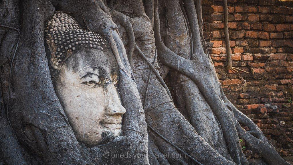 Ayutthaya tête de bouddha parc historique