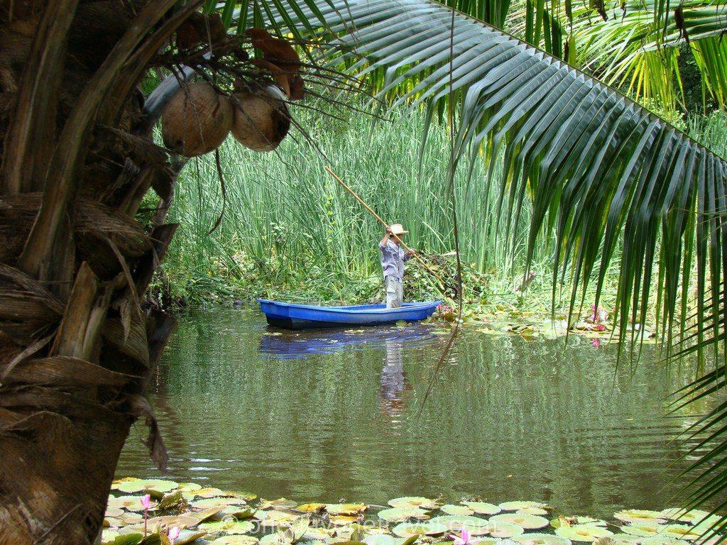 Ayutthaya Baan Lotus Blog Voyage OneDayOneTravel