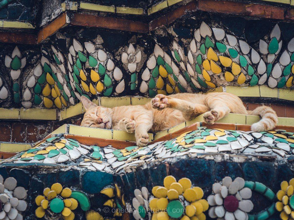 Bangkok Wat Pho chat
