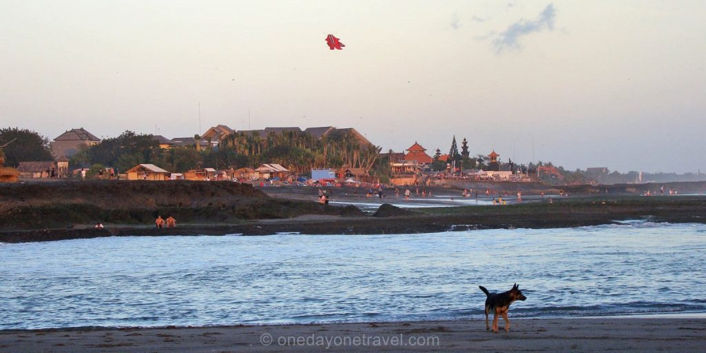 Canggu plage chien sunset