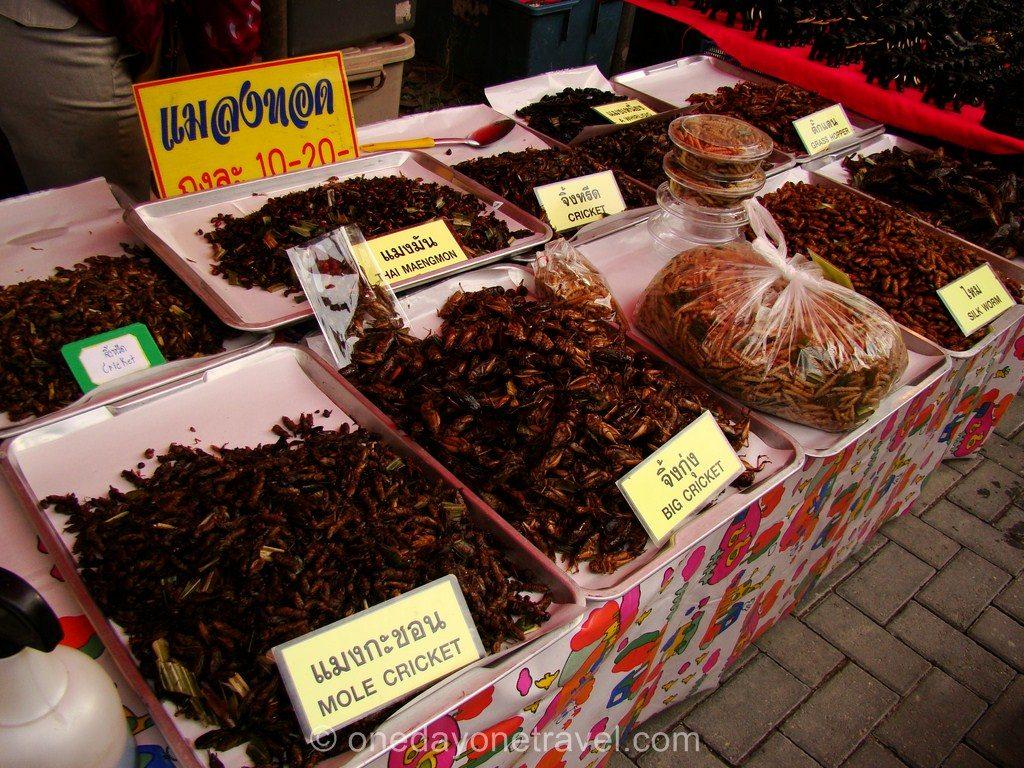 Chiang Mai marché du dimanche insecte