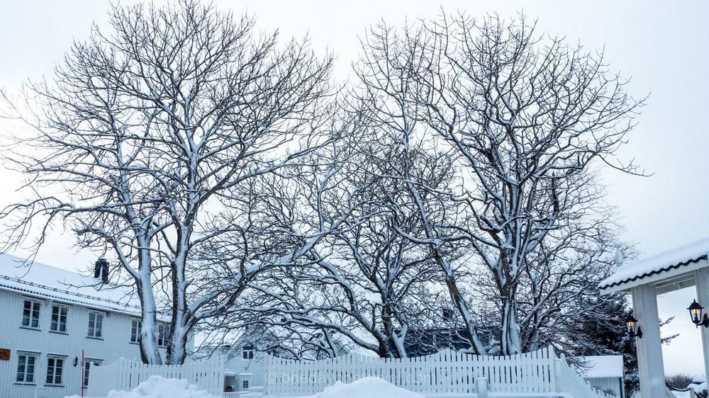 Norvège Blog Voyage hiver neige