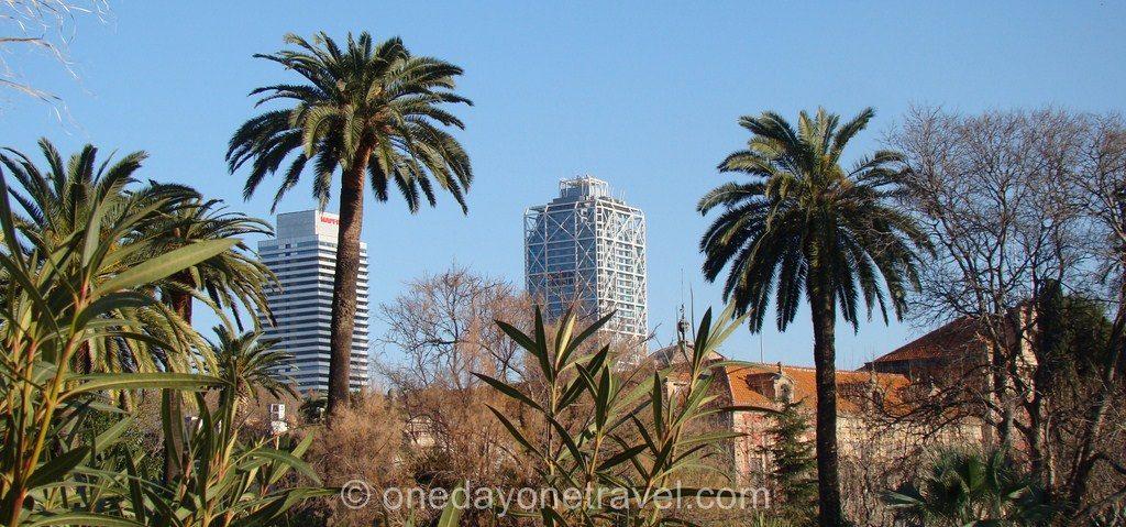 Port Olympique Barcelone palmier tour